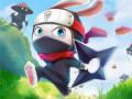 ऑनलाइन गेम्स Ninja Rabbit